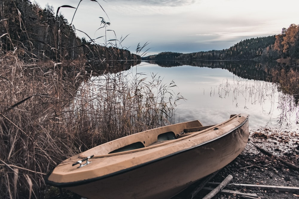 brown and white boat on lake during daytime
