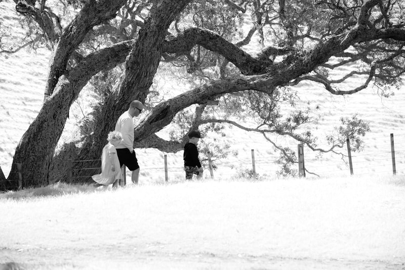 man and woman kissing under tree