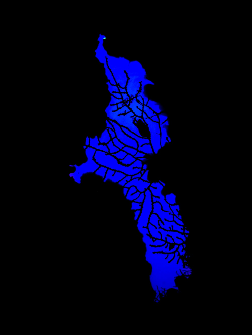 blue and black lightning digital wallpaper