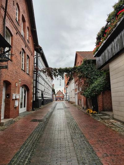 brown brick pathway between brown brick buildings