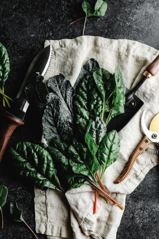 brown and black handle knife beside green leaves
