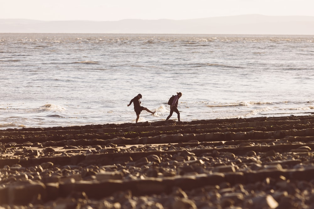 2 person walking on beach during daytime