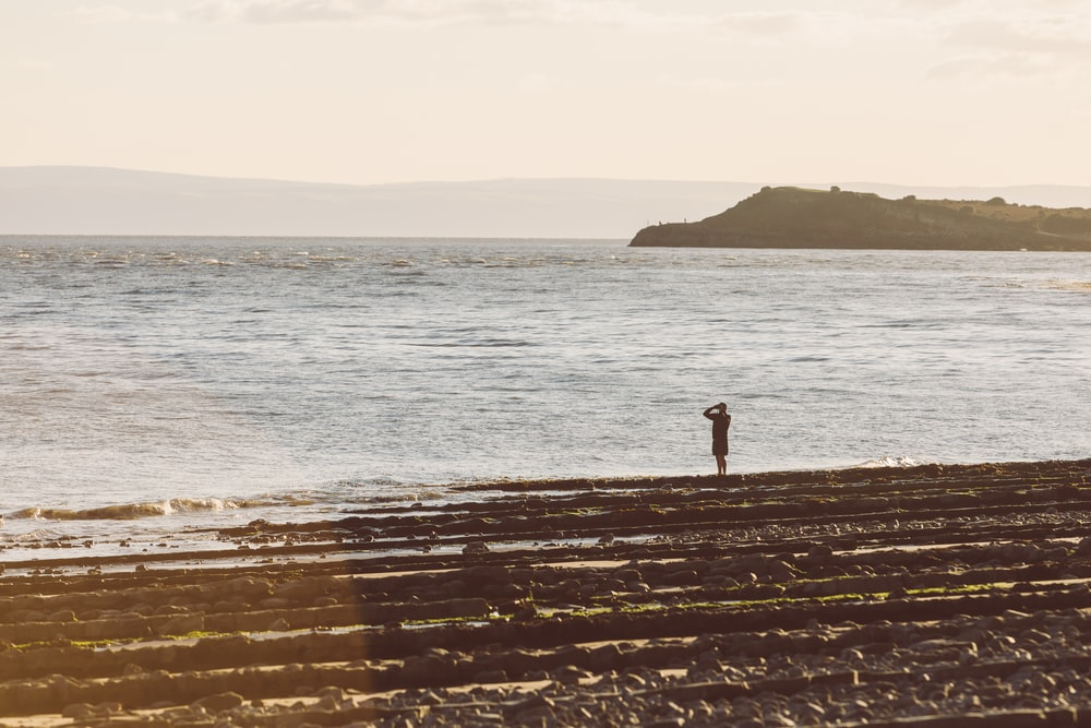 person standing on brown wooden dock near sea during daytime