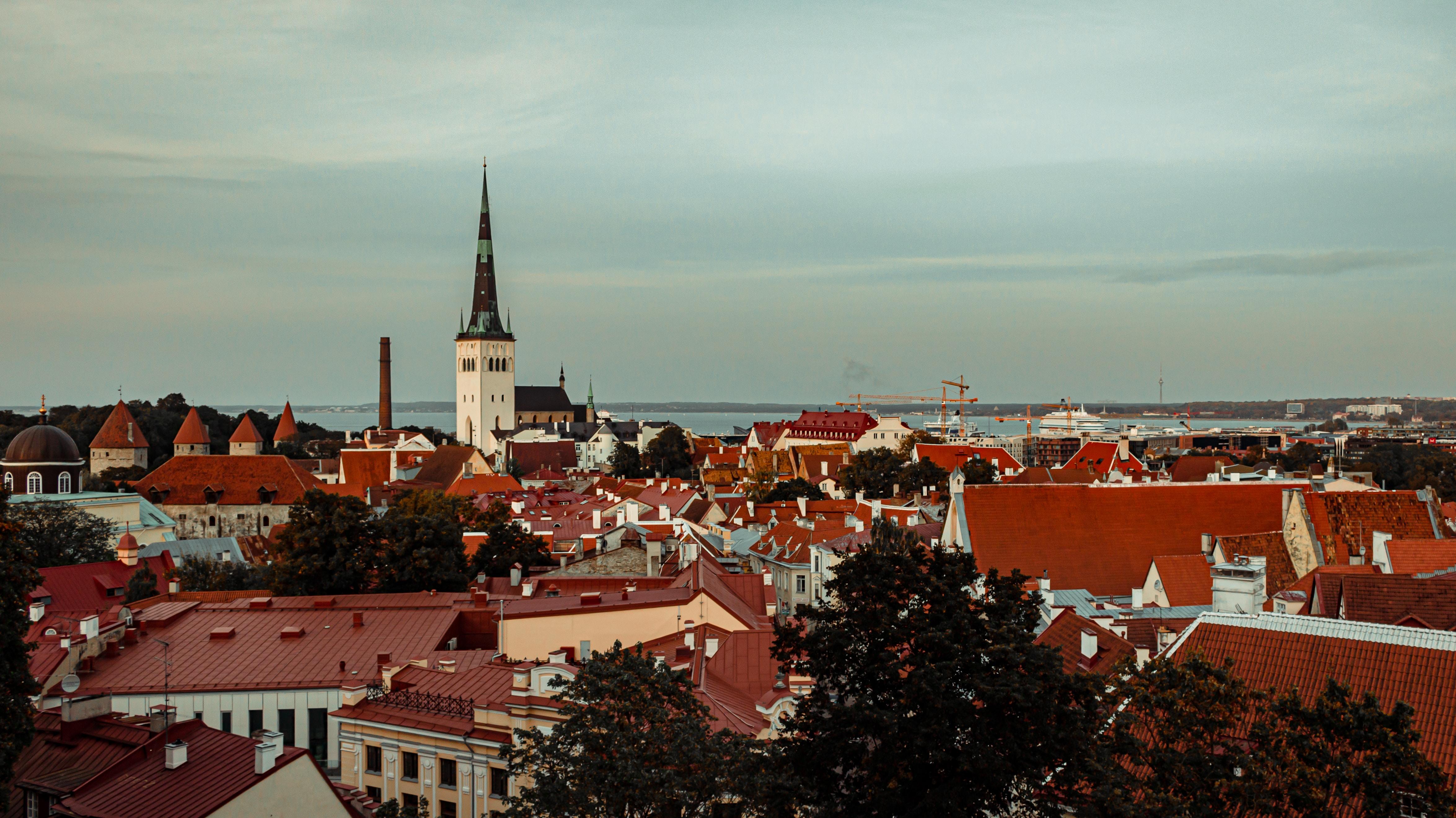 Личный опыт: рабочая и бизнес-эмиграция в Эстонию