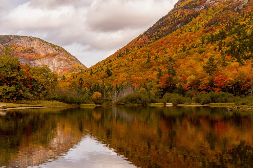 green and brown mountain beside lake under cloudy sky during daytime