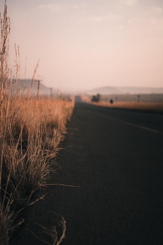 black asphalt road between brown grass field during daytime