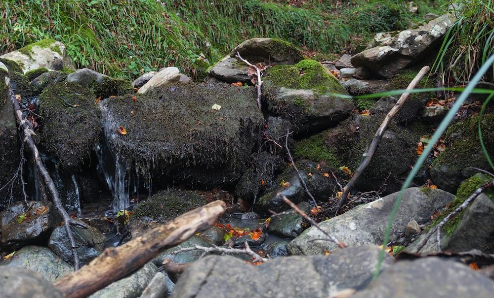 water flowing on gray rocks