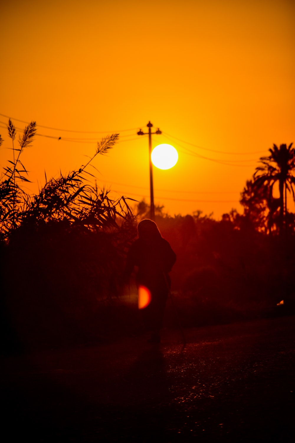 silhouette of person standing near street light during sunset