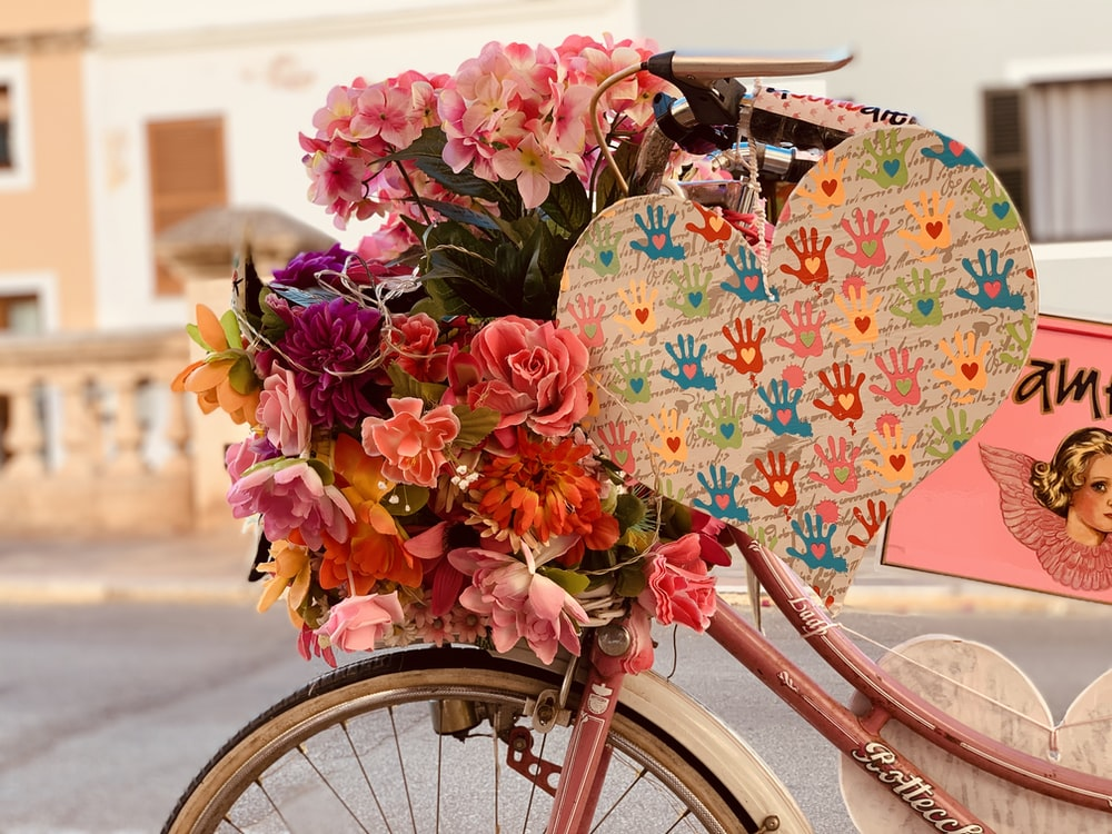 pink and white flowers on bicycle