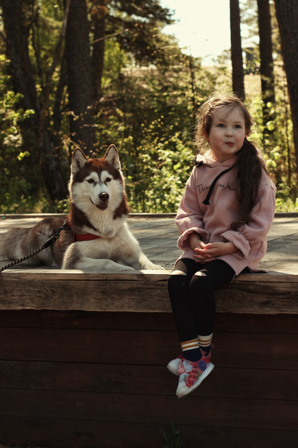woman in pink jacket sitting on brown wooden bench beside white and black siberian husky puppy