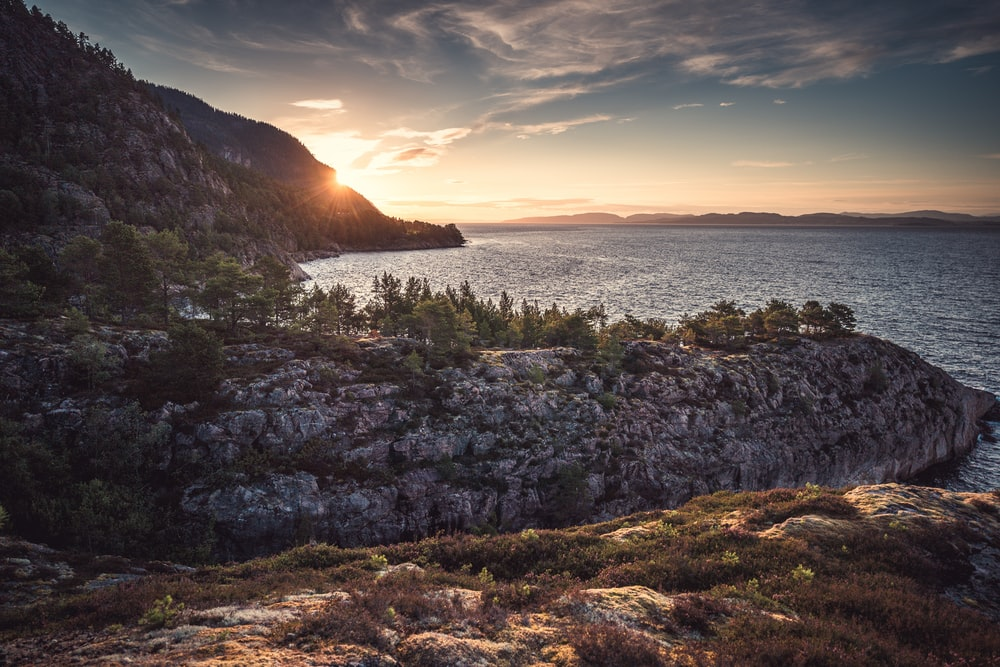 green grass on brown rocky shore during sunset
