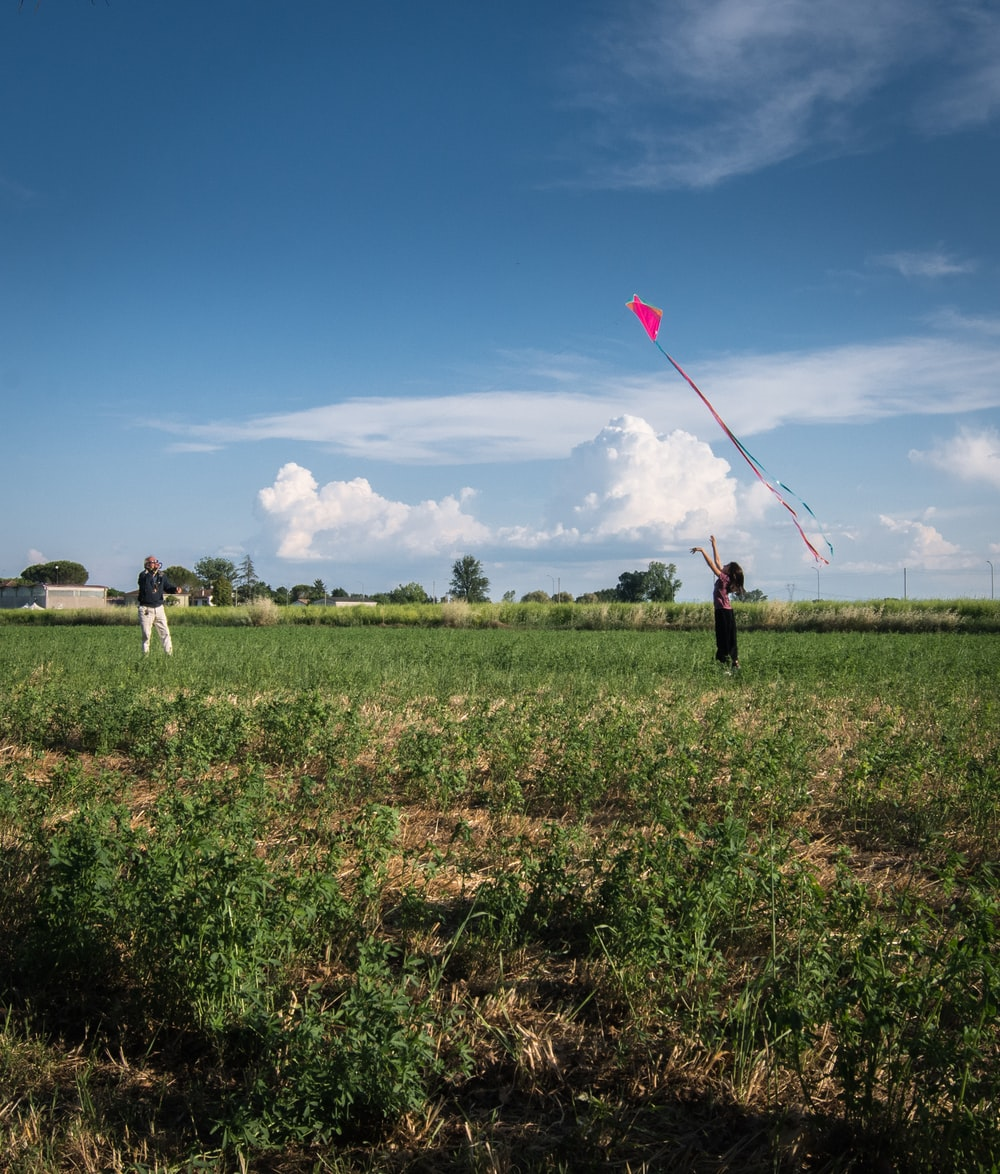 2 men and woman holding red balloons on green grass field during daytime