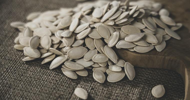 How Long Do Pumpkin Seeds Last? – Can They Go Bad?