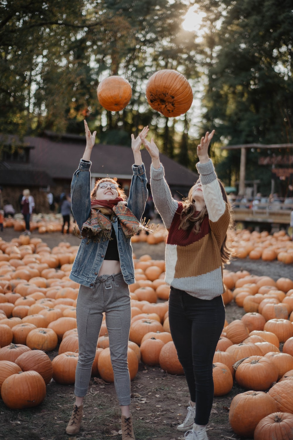 woman in brown long sleeve shirt and blue denim jeans standing in front of pumpkins