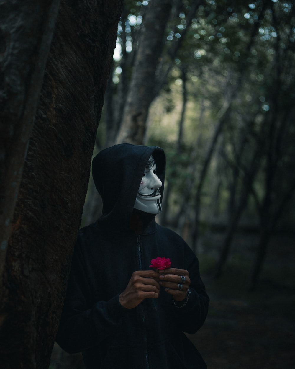 person in black hoodie standing beside tree