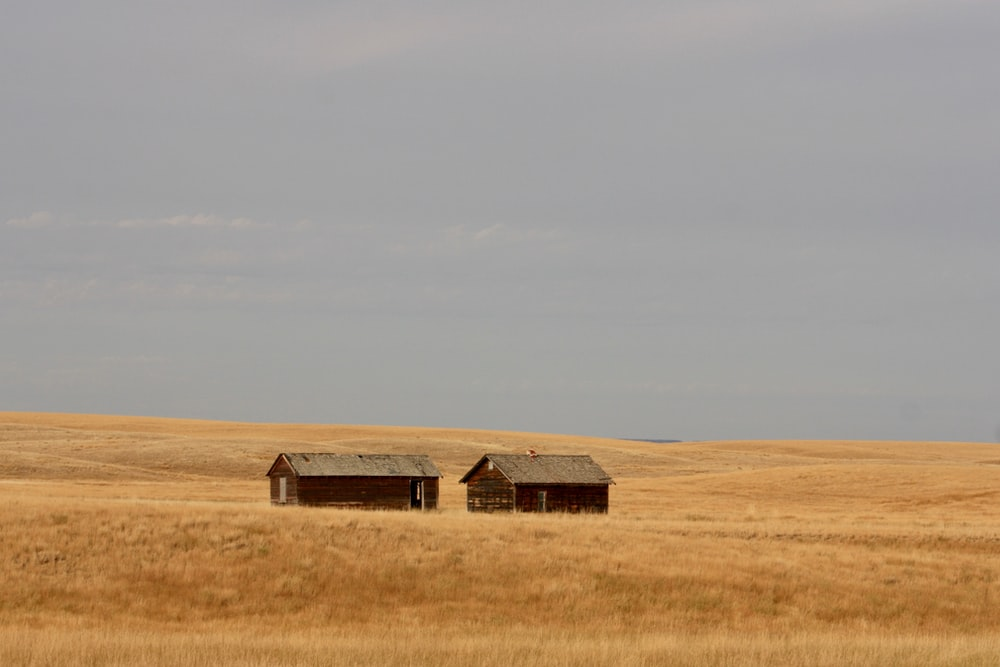 brown wooden house on brown grass field under white sky during daytime