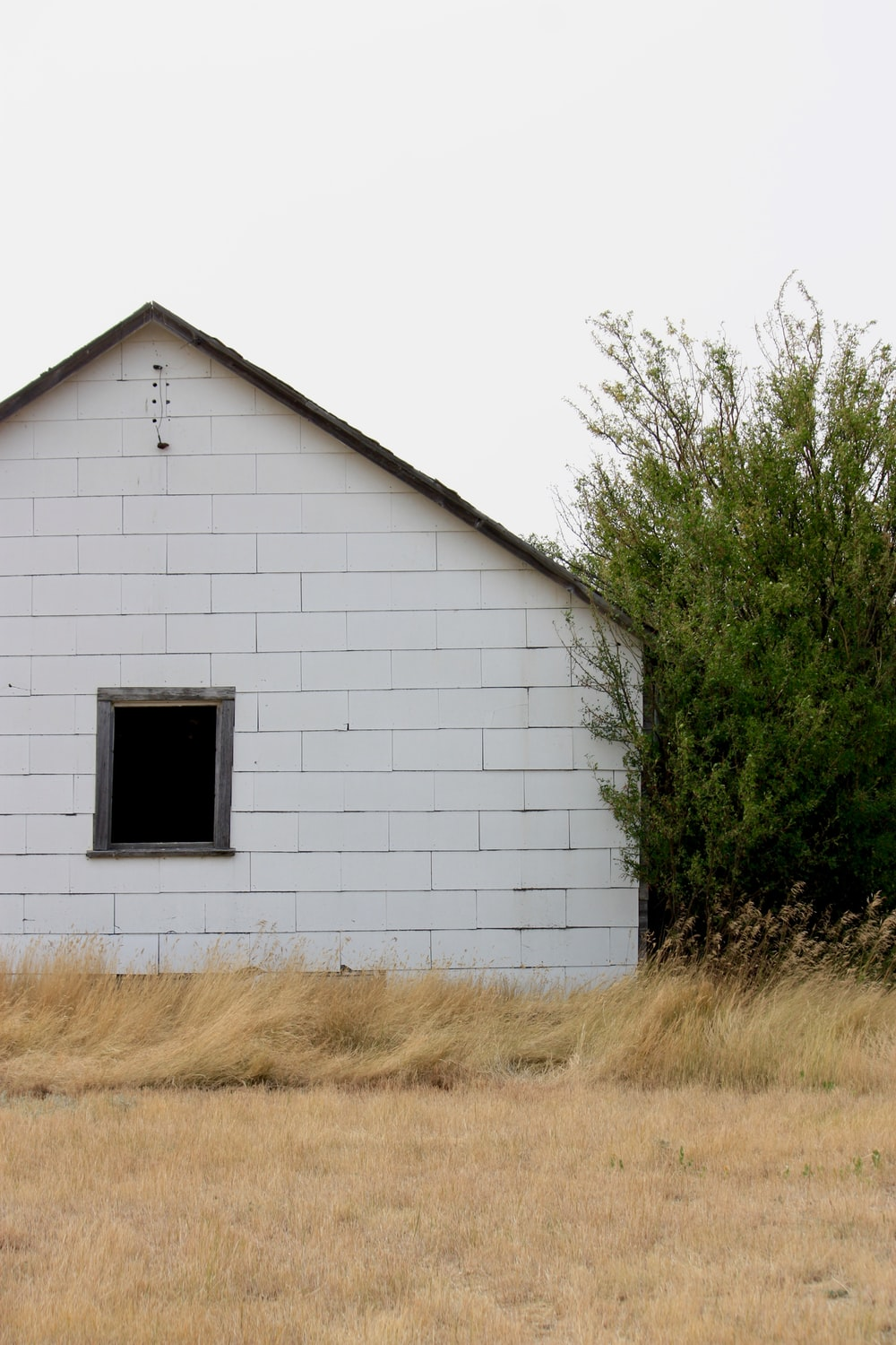 white wooden house near green tree during daytime