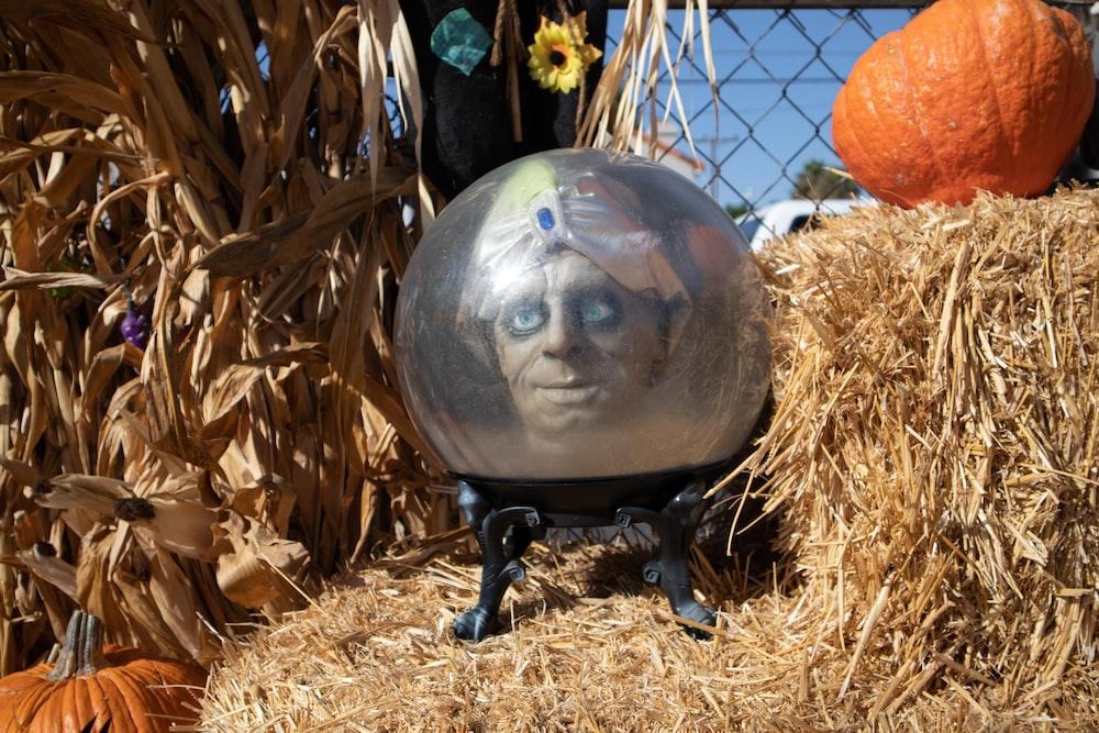 black and orange globe on brown hay