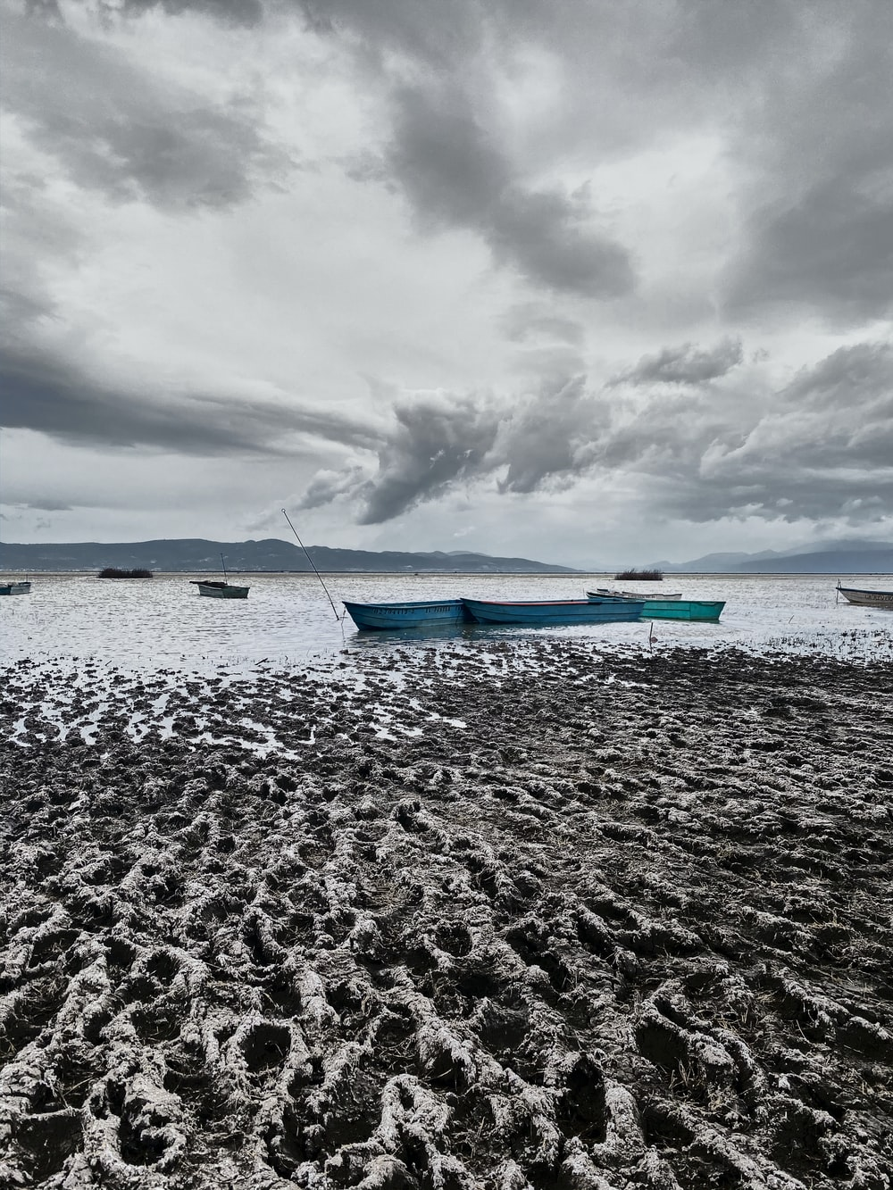 blue and white boat on sea shore during daytime