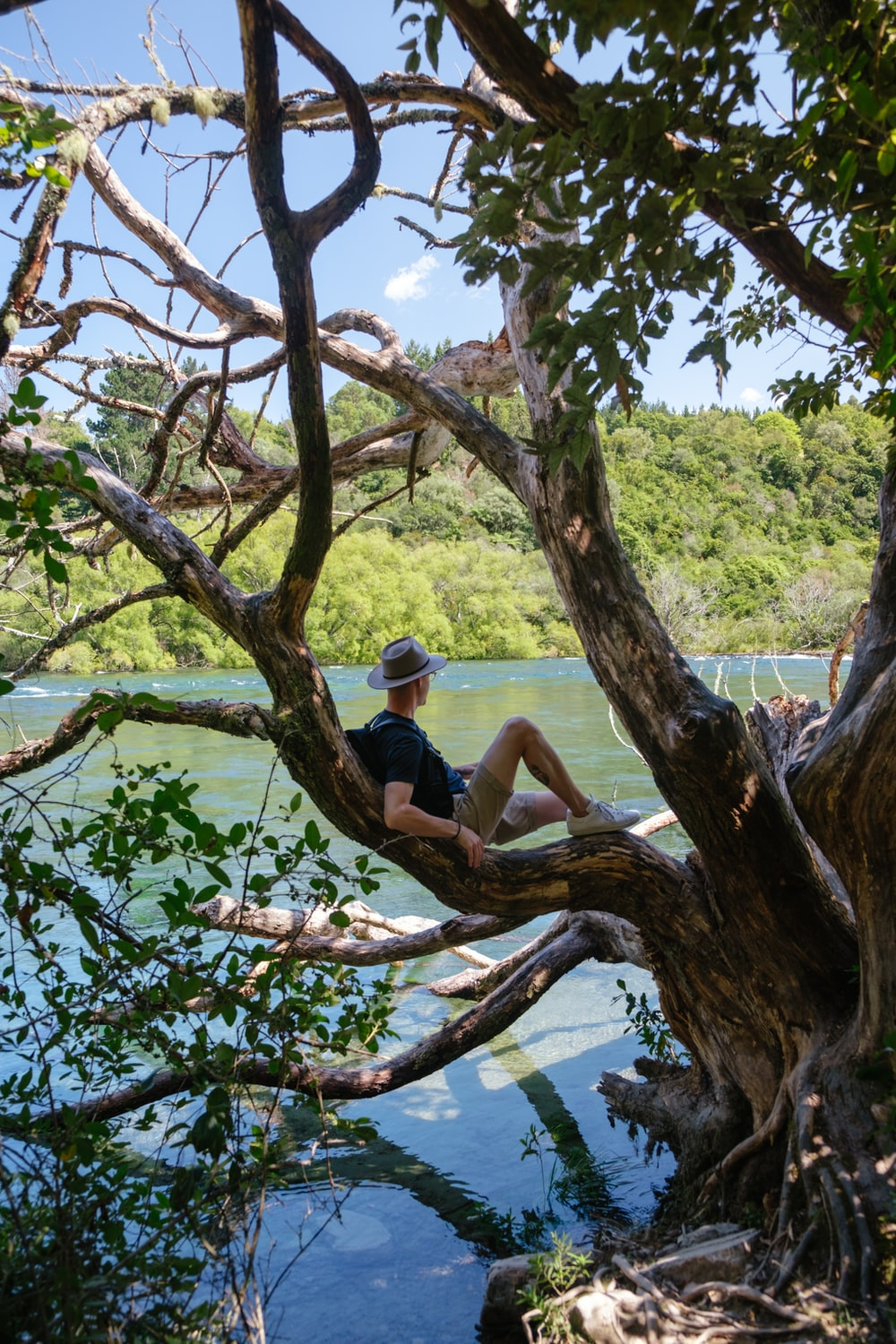 man in blue t-shirt sitting on tree branch during daytime