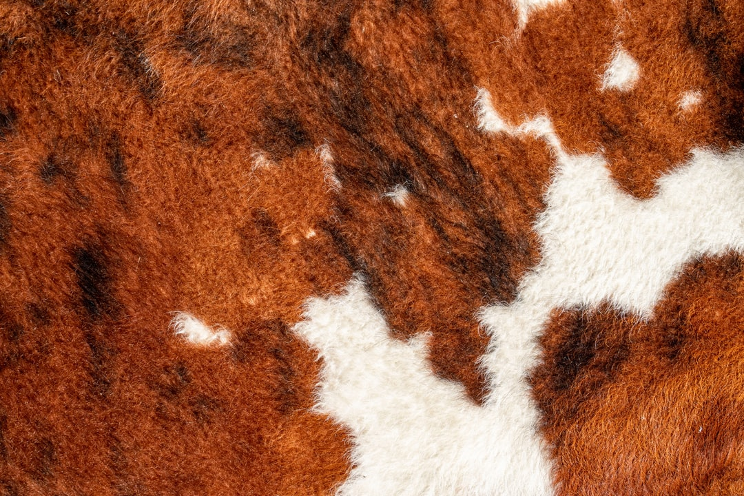 Brown and White Fur Textile - unsplash
