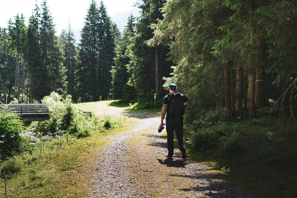 2 men walking on dirt road between green trees during daytime