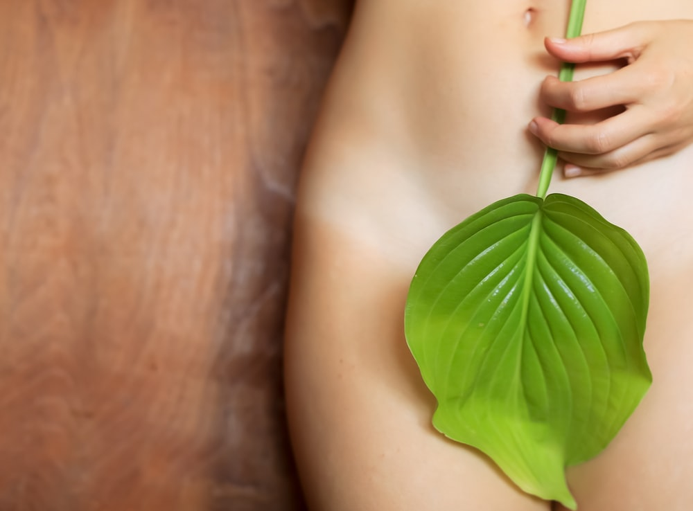 woman with green leaf on her breast