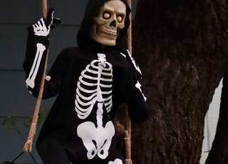 man in black and white skeleton costume standing beside brown tree