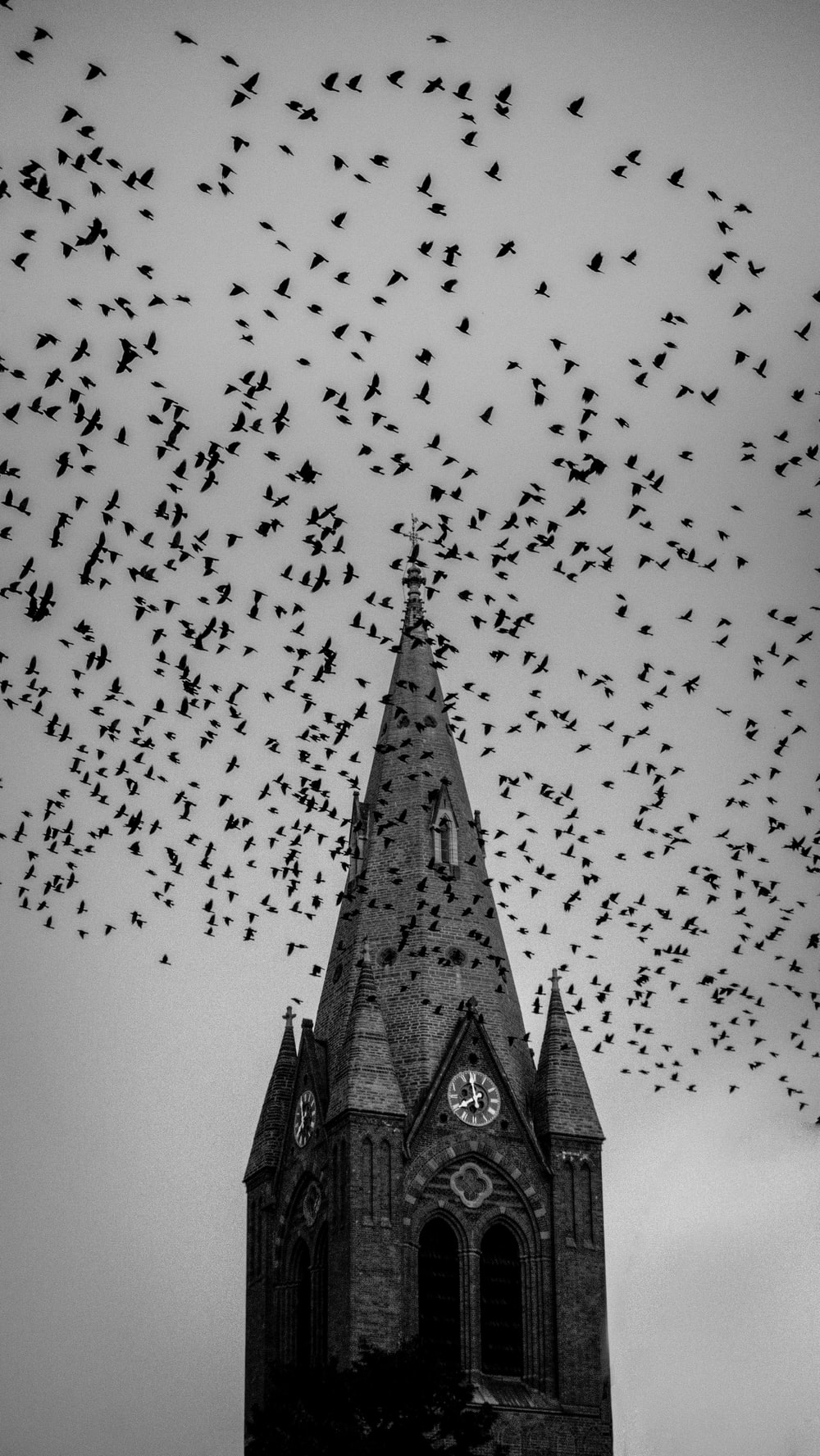 grayscale photo of cathedral under birds