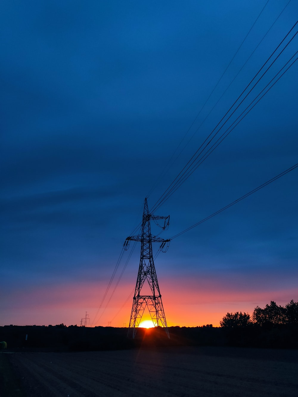 silhouette of trees and electric post during sunset