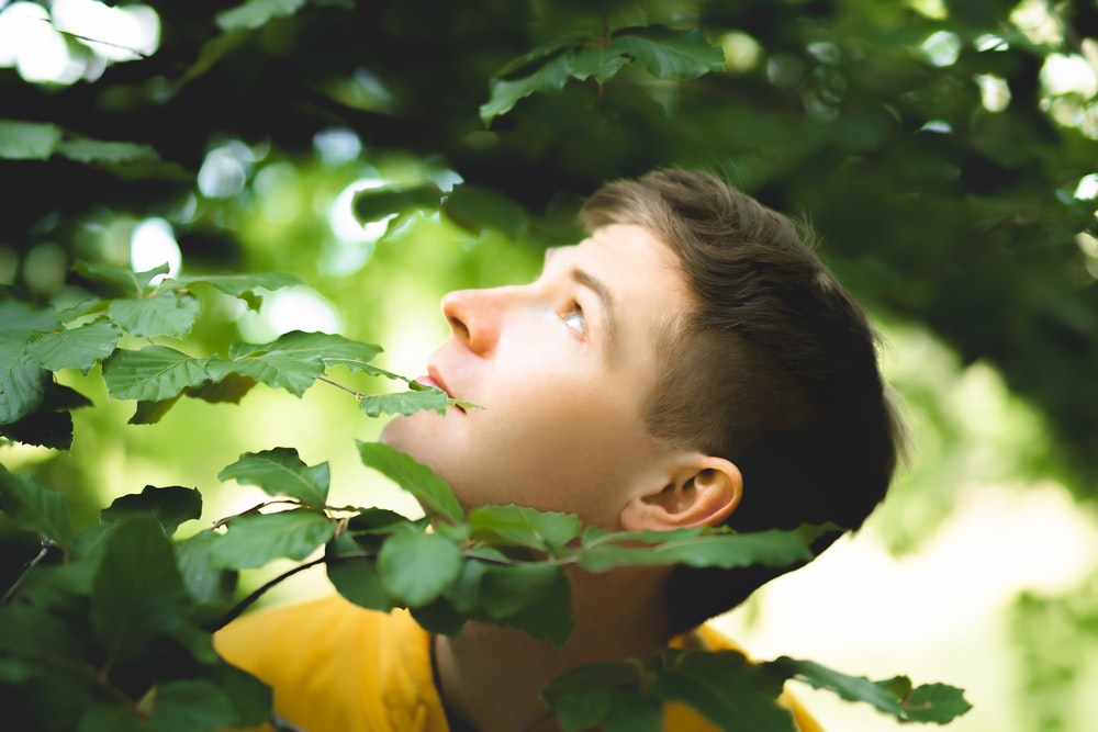 boy in yellow shirt looking at green leaves during daytime
