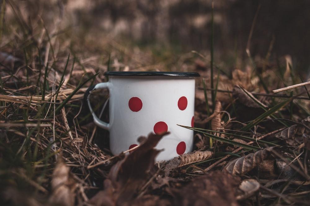 white and red polka dot ceramic mug on brown dried leaves