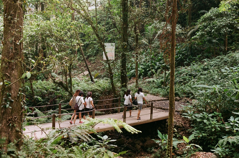 people sitting on brown wooden bridge during daytime