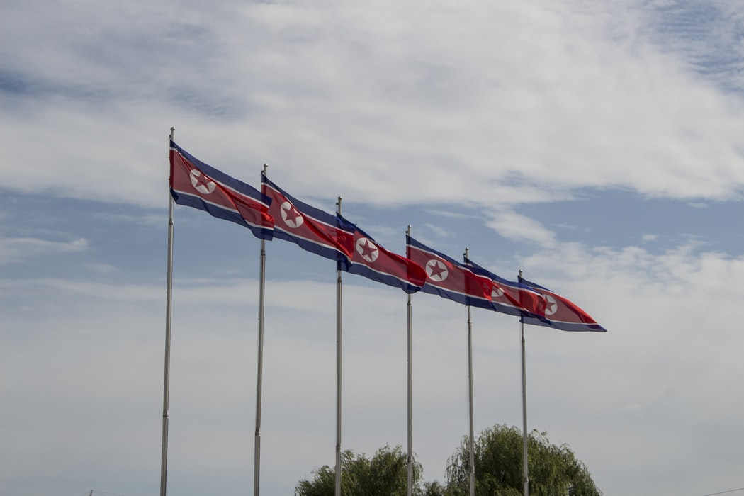Image of North Korean flags flying.