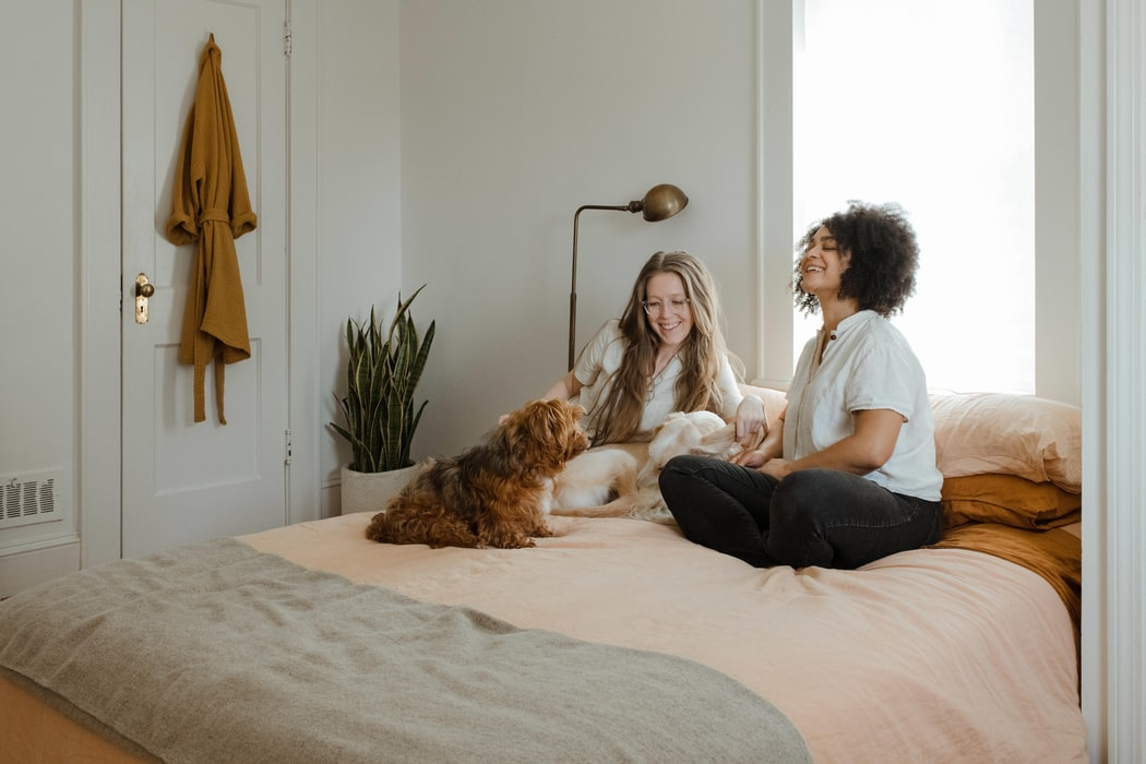 couple with pets on bed