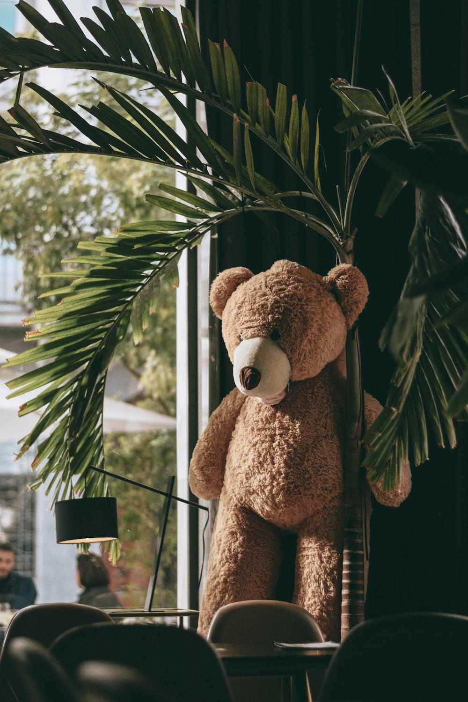 brown teddy bear on green leaves