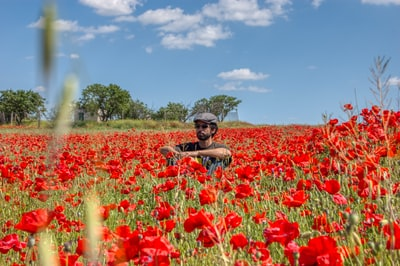 Man in brown hat surrounded by red flowers. Man sitting on a poppies field during day time