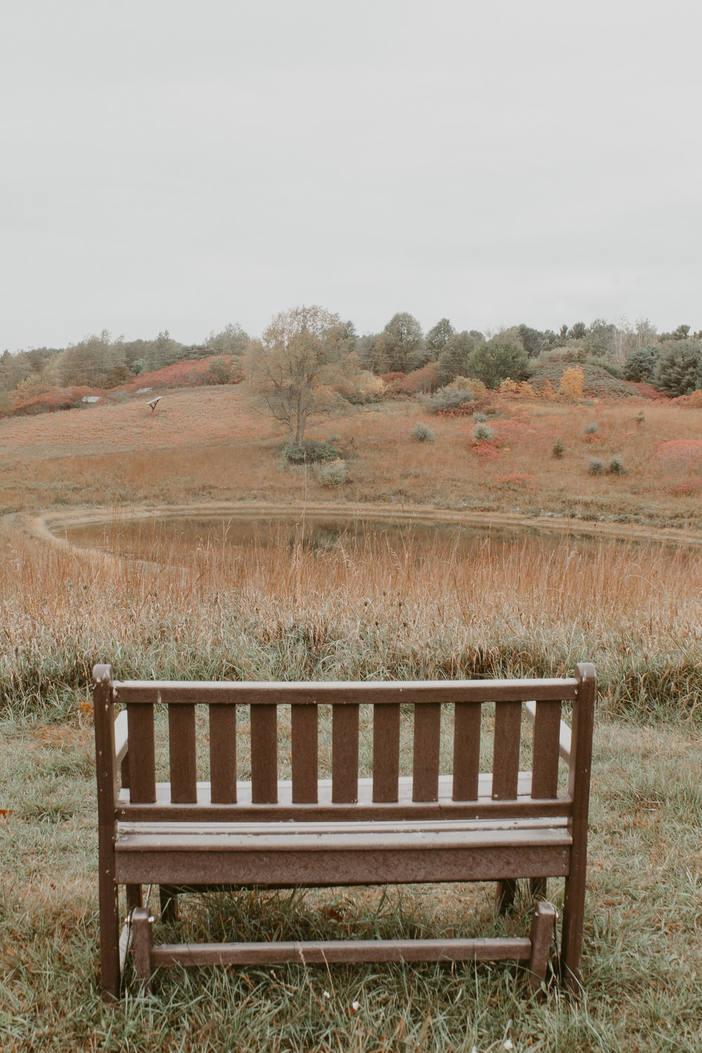 brown wooden bench on brown field during daytime