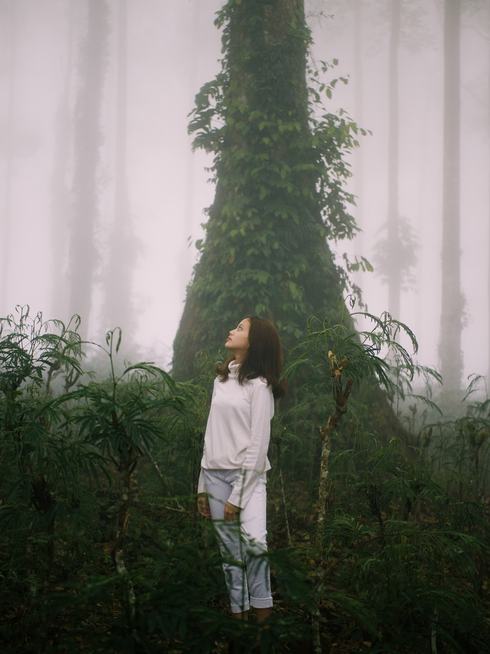 woman in white long sleeve shirt standing beside green tree during daytime