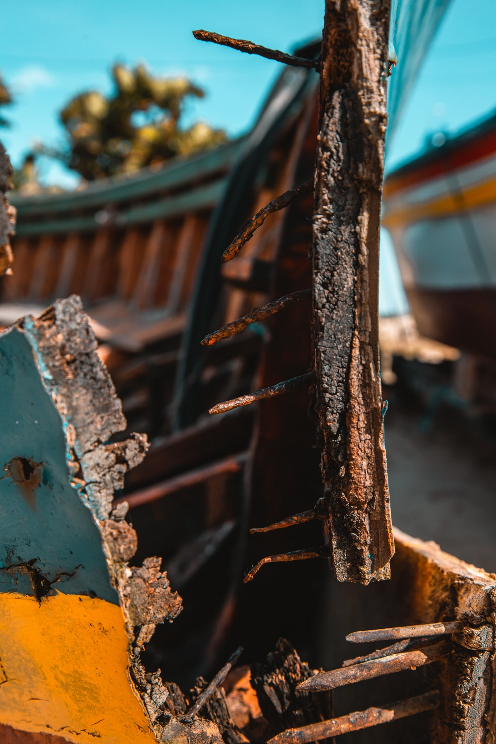 brown wooden log on yellow and blue boat