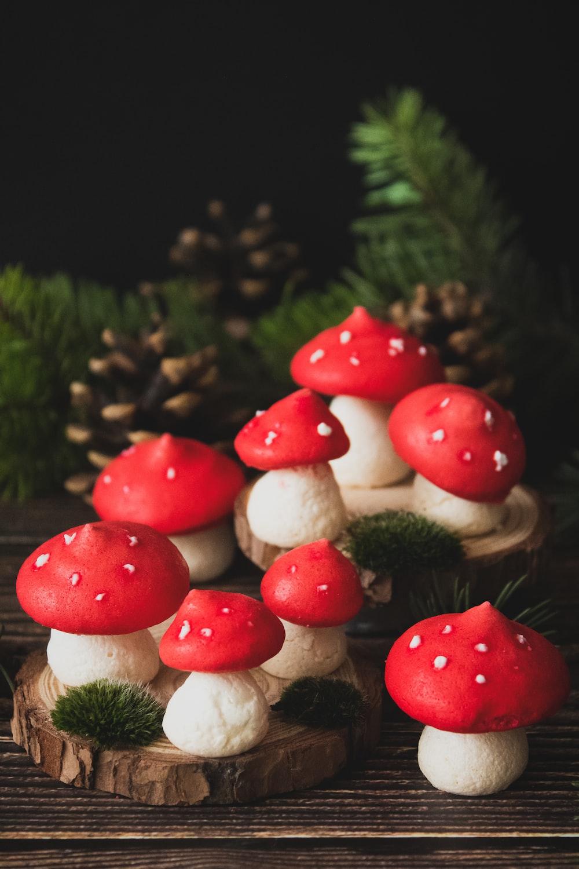 red and white mushrooms in tilt shift lens