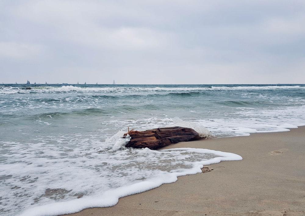 brown rock on seashore during daytime