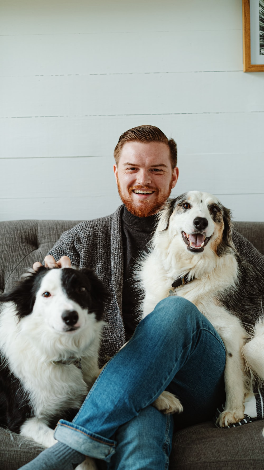 man in gray sweater sitting beside black and white border collie