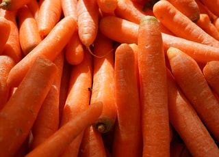 orange carrots in close up photography