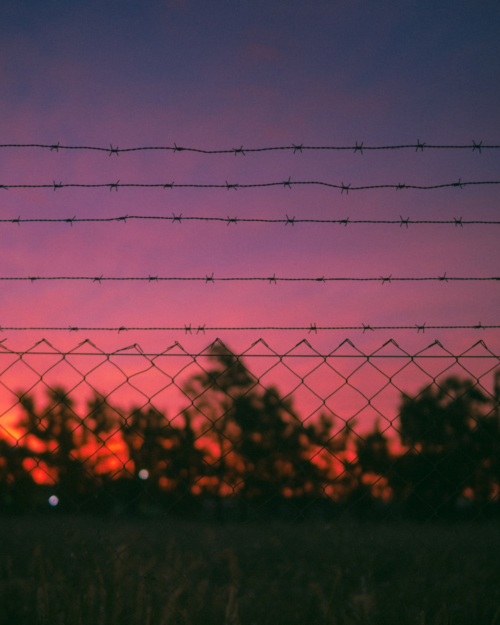 black wire fence during sunset