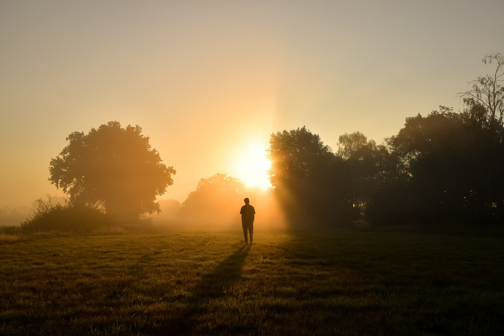 silhouette of person standing on green grass field during sunset