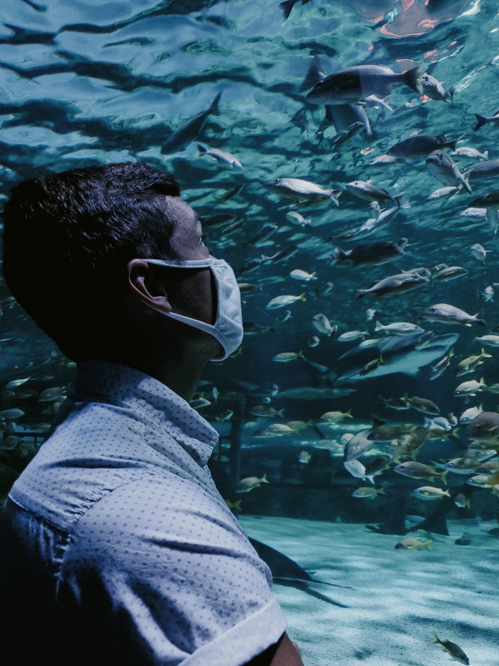 man in white and black stripe shirt wearing white goggles in front of fish tank