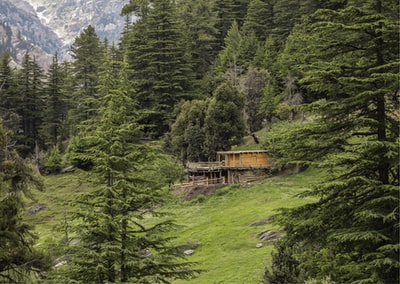 brown wooden house on green grass field near green trees during daytime afghanistan zoom background