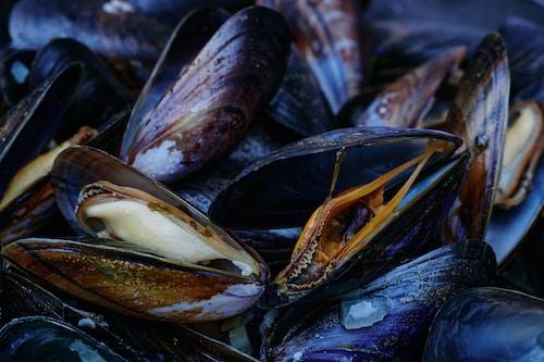 Spezialitäten - Risotto ai Frutti di Mare