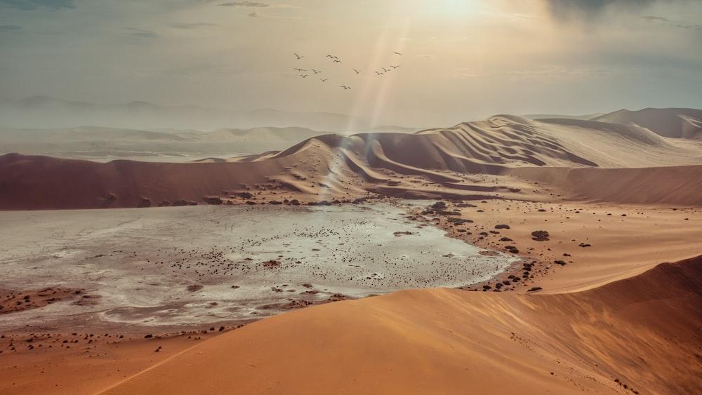 brown sand under sunny sky